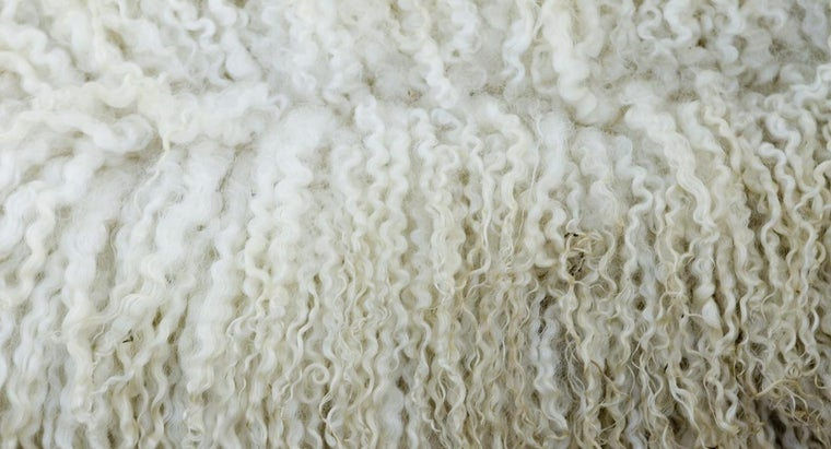 pure-new-wool