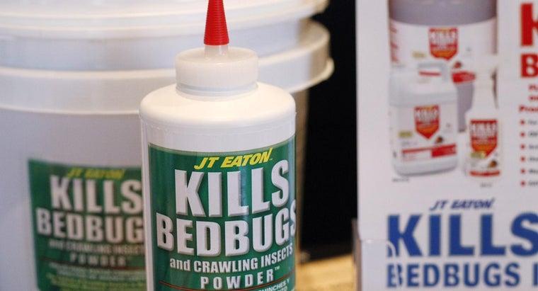 kill-bedbugs