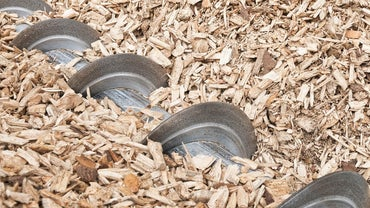 What Are the Advantages of Biomass Energy?