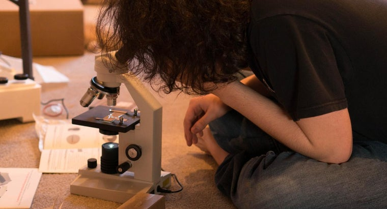 advantages-disadvantages-microscopes