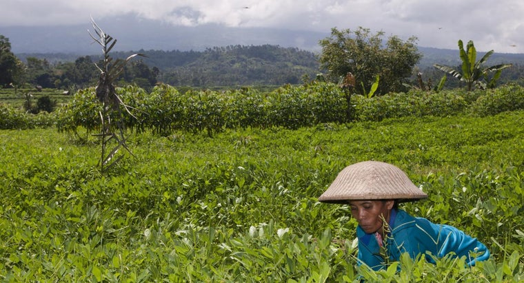 agrarian-economy