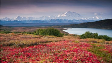 What Is Alaska's Climate?