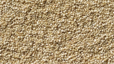 What Is the Amino Acid Content of Quinoa?