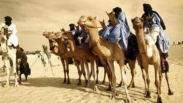 Does Anyone Actually Live in the Sahara Desert?