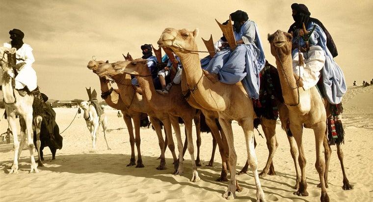 anyone-actually-live-sahara-desert