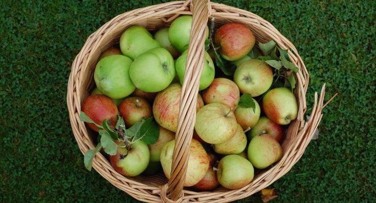 apple-picking-season-begin