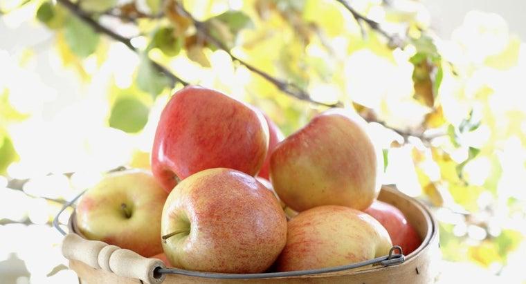 apples-grow