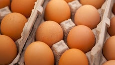 Are Eggs Fattening?