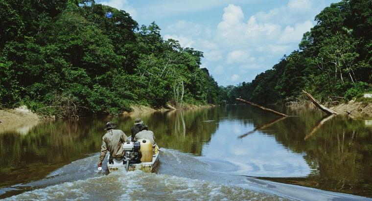 average-temperature-tropical-rainforest