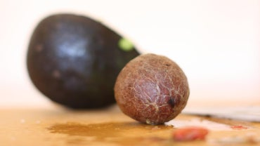 Are Avocado Pits Edible?