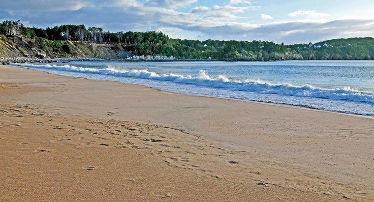 beaches-form