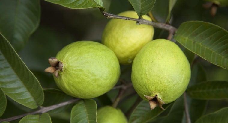 benefits-foods-high-pectin