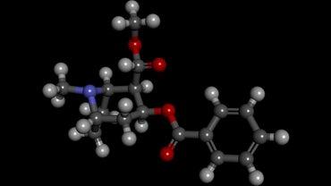 What Is Benzoylecgonine?