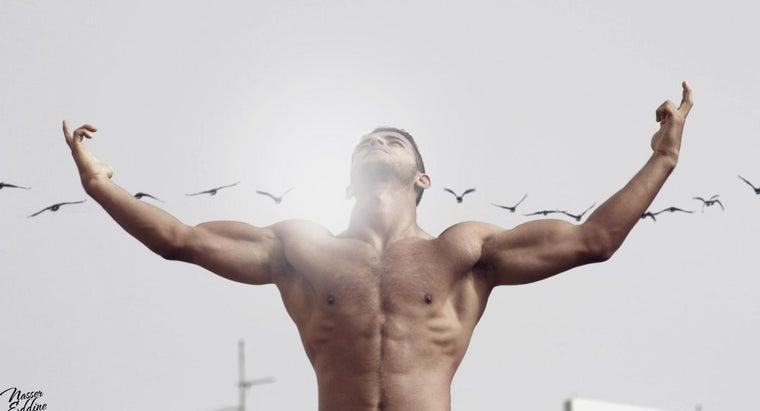biceps-triceps-located