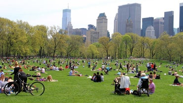 How Big Is Central Park in New York City?
