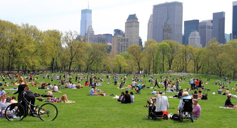 big-central-park-new-york-city
