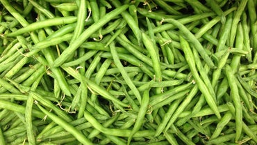 How Do You Blanch Fresh Green Beans?