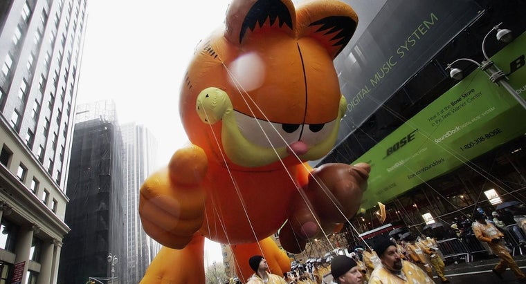 breed-cat-garfield