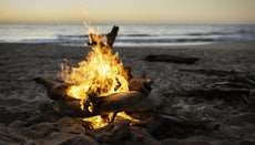 Why Does Burning Wood Pop and Crackle?