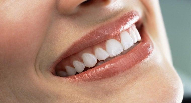 can-adults-grow-new-teeth