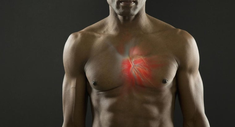 can-cardiac-muscle-tetanized