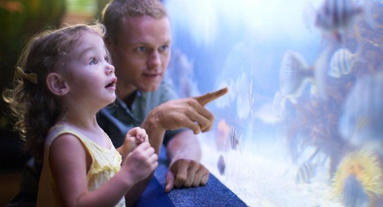 can-coupons-aquarium-jenks-okla