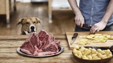 Can Dogs Eat Steak Bones?