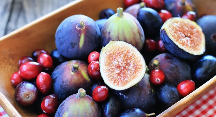 can-dogs-safely-eat-figs