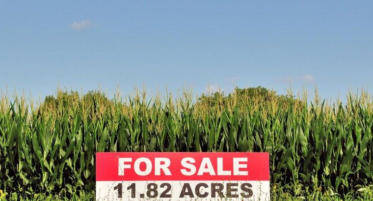 can-farm-sale-cheap-price