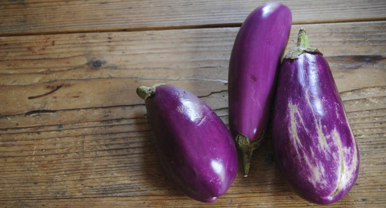 can-freeze-eggplant