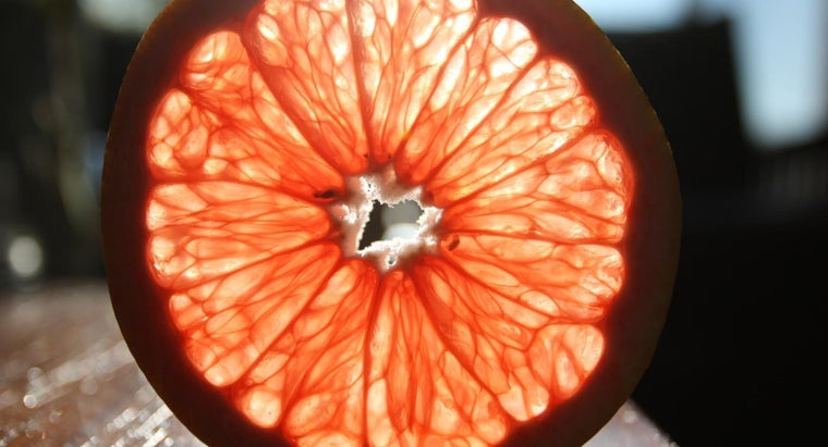 can-fruits-make-electricity