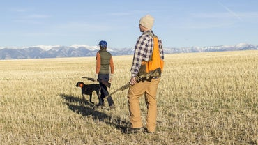 Where Can You Find a Hunter Education Practice Test?