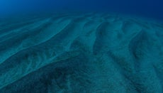 How Can Plates Move Apart at the Mid-Ocean Ridges and Not Leave a Deep Gap in the Lithosphere?