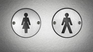 Can You Tell the Difference Between Male and Female Urine?