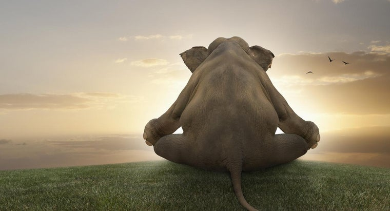 can-yoga-depression