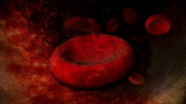 What Is the Cause of Enlarged Red Blood Cells?