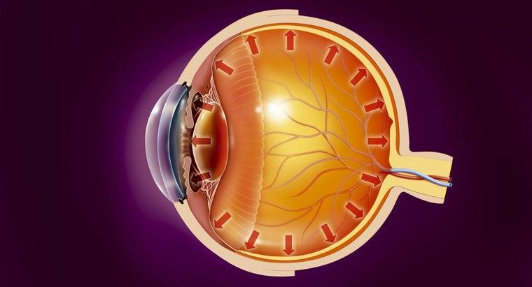 causes-glaucoma