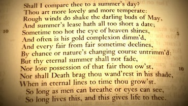 What Are the Characteristics of a Sonnet?