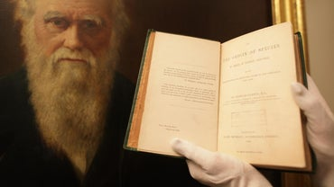 What Are Some Charles Darwin Inventions?