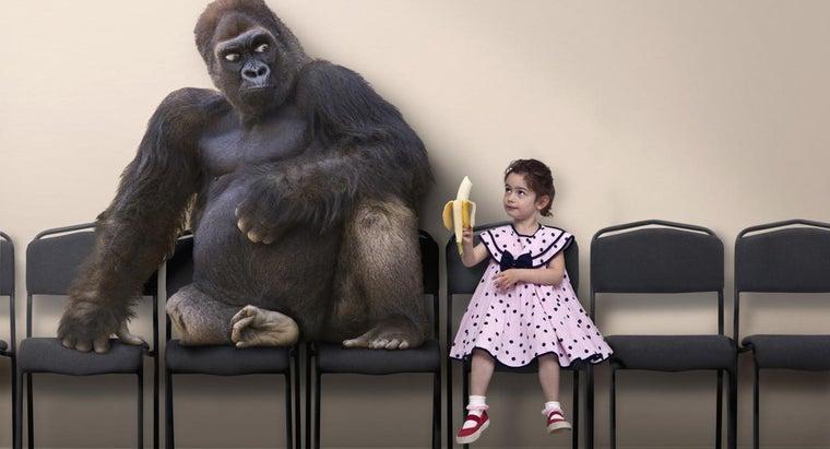 chemical-properties-banana
