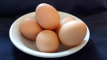 What Are Chicken Eggs Made Of?