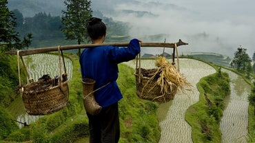 What Are the Natural Resources of China?