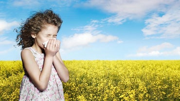 Why Do We Close Our Eyes When We Sneeze?