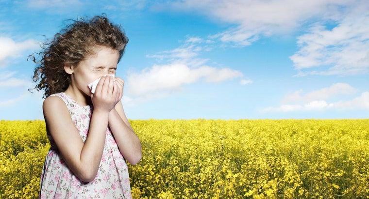 close-eyes-sneeze