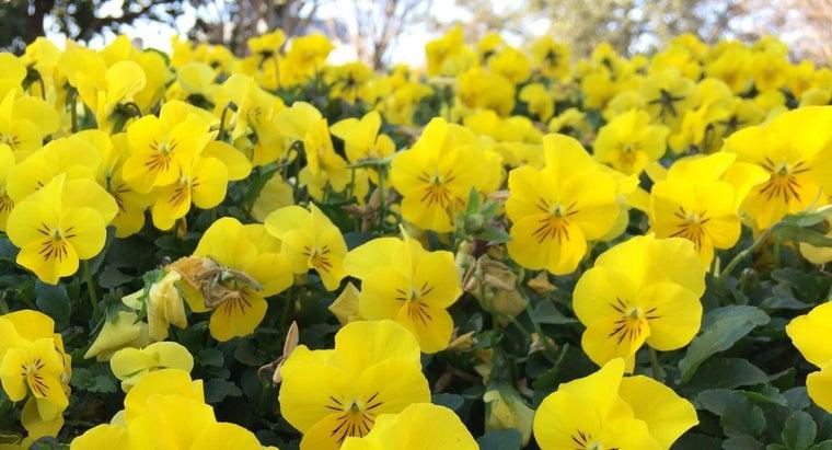 colors-make-yellow