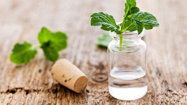 What Are Some Common Uses for Peppermint Oil?