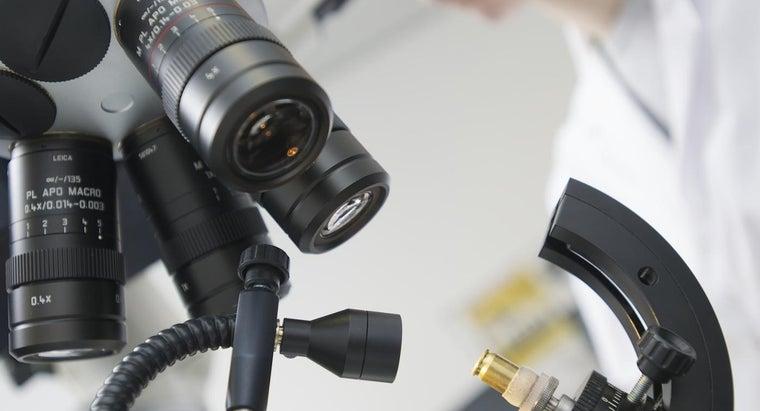 comparison-microscope