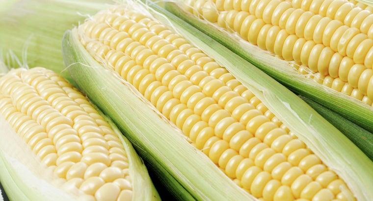 corn-considered-vegetable