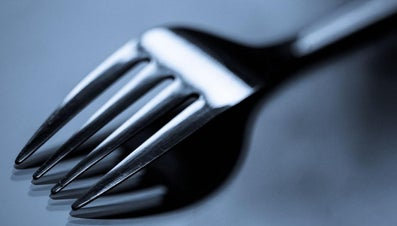 What Is the Correct Term for Fork Prongs?