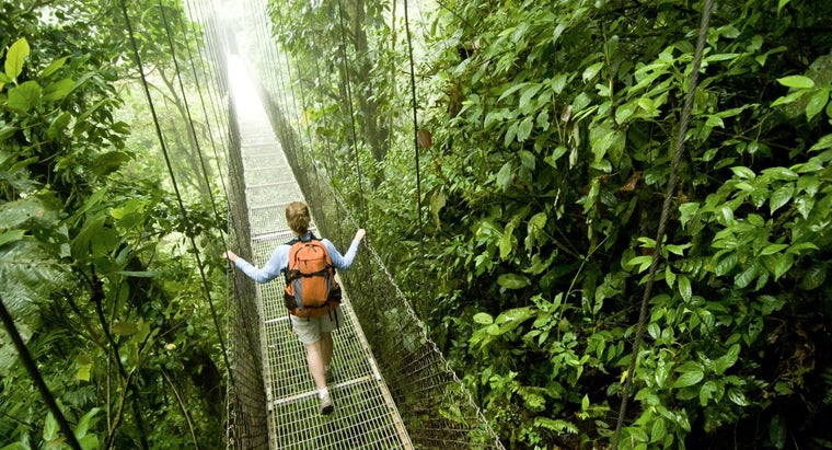 What Is Costa Rica Famous For Reference